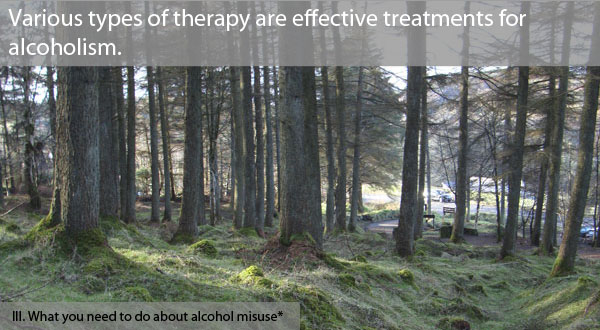 AA has been a powerful tool in helping many people to recover from alcohol misuse.